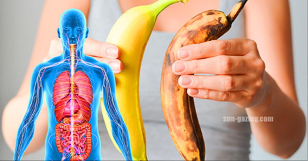 Essen Sie einen Monat lang zwei Bananen täglich und folgendes ...