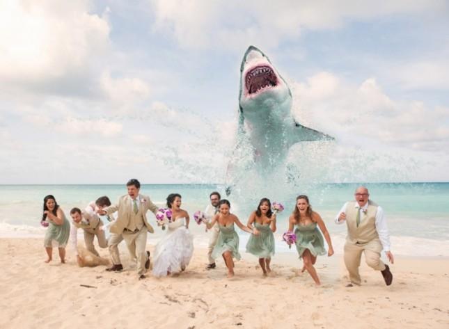 Shark-Attack-Wedding-Photo-Joseph-Esser-Photography