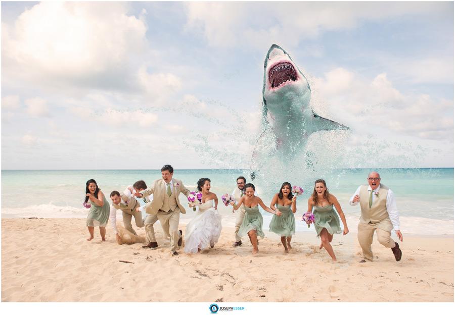 Shark-Attack-Wedding-Photo